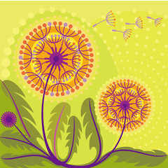 abstract background decorative dandelions