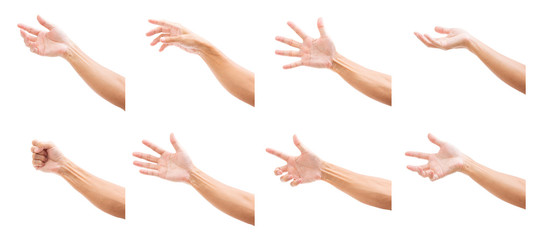 Set of man hands isolated on white background Wall mural