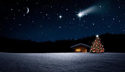 Weihnachtbaum im Nächtlichen Winterwald Wall mural