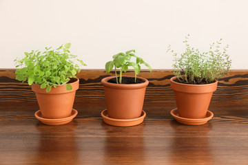Pots with fresh aromatic herbs on wooden table