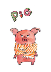 A pig in a scarf. The pig is a symbol of the new year. Watercolor illustration of a cute pig