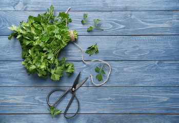 Fresh aromatic parsley with scissors on color wooden background