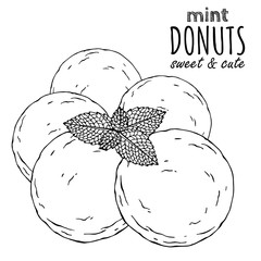 Group of vector illustrations on the sweets theme; set of different kinds of donuts decorated with powdered sugar and mint. Realistic isolated objects for your design.