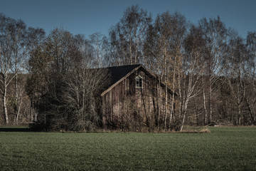 Abandoned barn standing overgrown on green field
