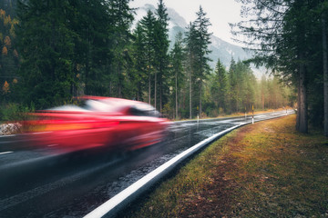 Blurred red car in motion on the road in autumn forest in rain. Perfect asphalt mountain road in overcast rainy day. Roadway, pine trees in italian alps. Transportation. Highway in foggy woodland