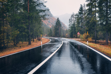 Road in the autumn forest in rain. Perfect asphalt mountain road in overcast rainy day. Roadway with reflection and pine trees in italian alps. Transportation. Empty highway in foggy woodland. Trip Fotobehang
