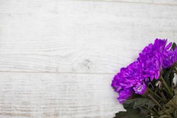 purple flowers on wooden background flatlay