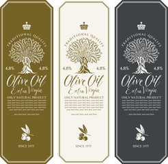 Vector set of three labels for extra virgin olive oil with olive tree, olive sprig, calligraphic handwritten inscription and place for text in figured frame in retro style.