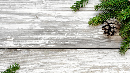 Christmas Fir tree branches and pine cone background