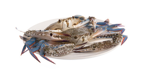 Fresh crab on a plate isolated on white background.