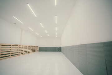 Gymnasium for martial arts training with tatami mat.