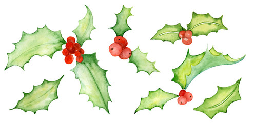 Watercolor Christmas mistletoe  illustration  Hand drawn illustration