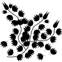 darktone of leaf isolated on white