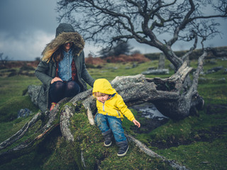Mother and toddler looking at fallen tree