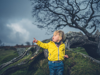 Toddler by tree on moor is pointing
