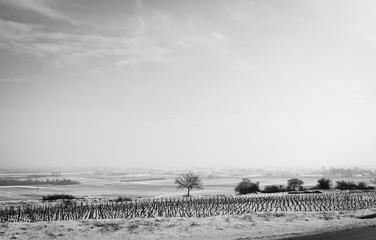 Papiers peints Blanc paysage sous la neige en Bourgogne