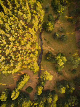 Aerial shoot of woods from Soria, Spain.