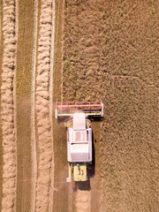 Aerial view of combine harvester in field