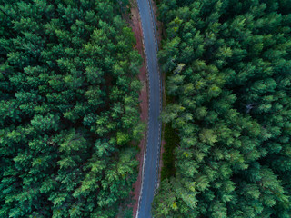 Aerial view from drone, of curved mountain road between woods.