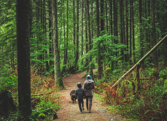 mother, son, and large dog walking along a path in a lush green forest