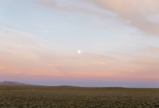 Country field prairie near mountains at sunset in western USA