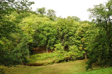 a forest park in toila, Estonia. Oru park
