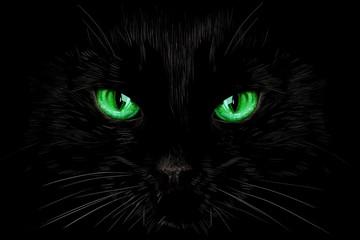 Black cat's green eyes on black background. Halloween card, invitation, animal hand drawn illustration, element for design