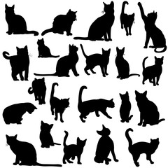 silhouette of the cat set