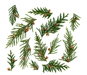 Set of Christmas and New Year decoration for design on the white background with thuja, cones and decorations. Scrapbooking ideas