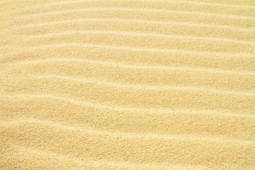 Rippled sand on the sea coast formed by wind and water, background, texture, pattern