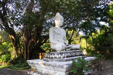 Buddha at Wat Kokpab - Luang Prabang, Laos