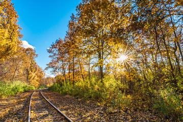 Colorful autumn landscape Beautiful autumn forest sun burst lens flare sun star train tracks