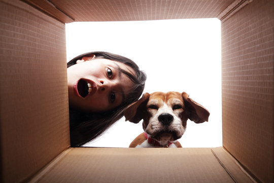 Teen girl and her dog looking at something inside a box