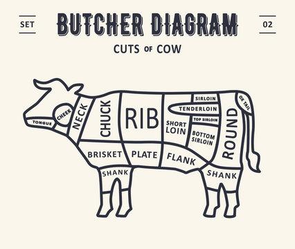 Cut of meat set. Poster Butcher diagram and scheme - Beef/cow. Vintage typographic. Diagrams for butcher shop, design for restaurant or cafe. Vector Illustration