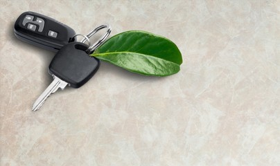 House key with green leaf on wooden
