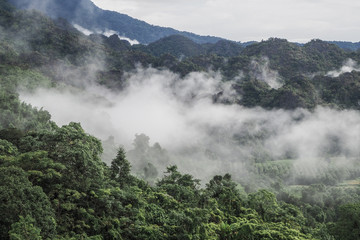 Landscape of Phu Lanka mountain forest park in Phayao province Thailand
