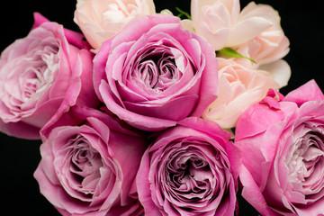 バラ・オール4ラブ+とスプレーバラ・サントワマミー/Rose-All 4 Love/Splay Rose-Sans toi ma mie