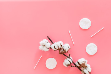 Bath accessories. Products for remove cosmetics. Cotton swabs and cotton pads near dry cotton flowers on pink background top view space for text