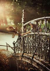Cute little girl feeding a wild bird in a city park