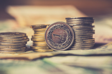 Polish and EURO currency banknotes and coins as a background