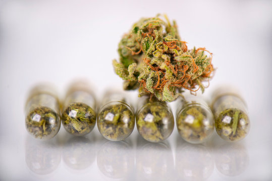 Medical marijuana concept with dry cannabis bud and capsules