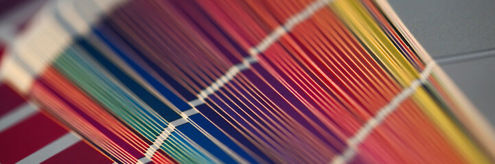 Color print of pantone statistics offset organization gives customer an order