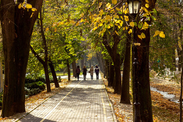Public park in autumn - Vrnjacka Banja, Serbia.. Vrnjacka Banja is a popular tourist destination in Serbia, a place that every year visit a millions of tourist. Also, here is placed a several source o