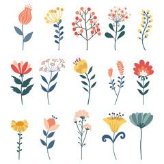 Vector set of doodle floral elements.Herbs, Hand drawn vector botany set.