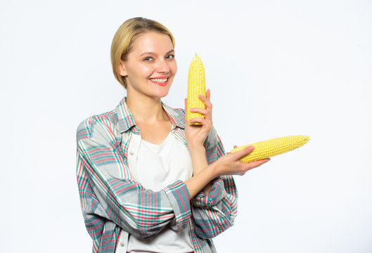 Agriculture and fall crops concept. Fall harvest concept. Woman farmer hold yellow corn cob on white background. Girl rustic style hold ripe corn in hand. Food vegetarian and healthy organic products