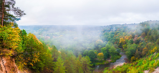 Forest river landscape draped in fog at autumn