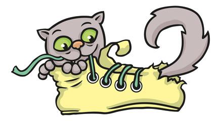 Katze spielt mit Schnürsenkel in einem gelben Schuh