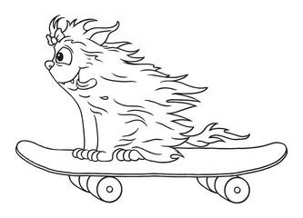 Terrier mit wehender Mähne auf einem Skateboard