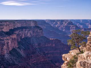 Der Grand Canyon in Nevada, USA.