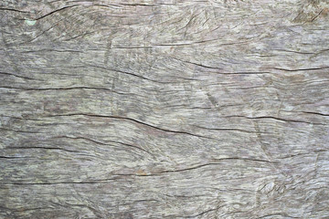 Top view of old rustic natural grunge black wood texture free background surface pattern.